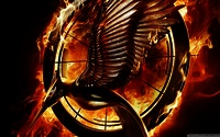 The-hunger-games-catching-fire-mockingbird-pin-wallpapers_37547_1280x800